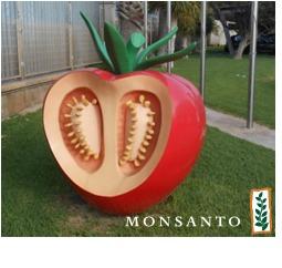 Monsanto%203.png
